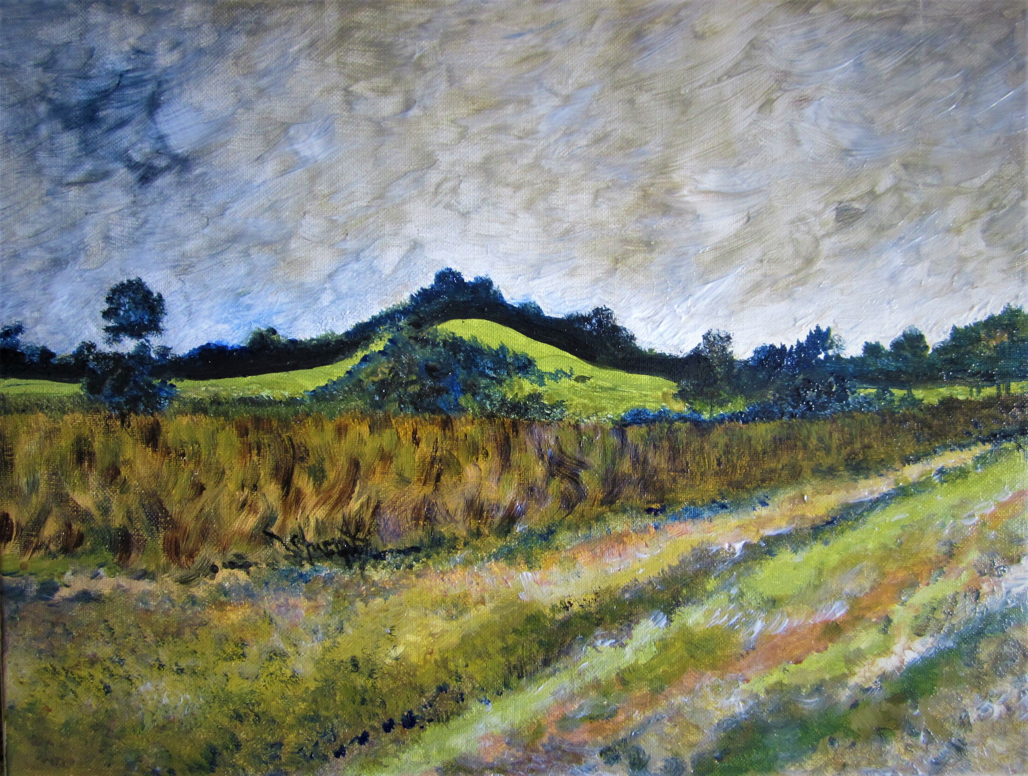"""Haney Hill, Acrylic on Canvas, 16"""" x 20"""", by Mary Patricia Stumpf"""