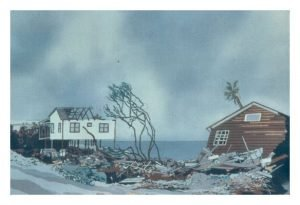 """Hugo"" Batik on Cotton, 25"" x 31"" by Mary Patricia Stumpf"